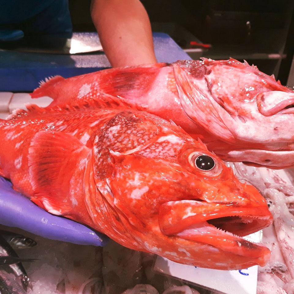 Consulta las pescaderías del Mercado El Fontán